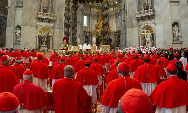 13 uutta kardinaalia